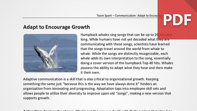 Team Spark: Adapt to Encourage Growth